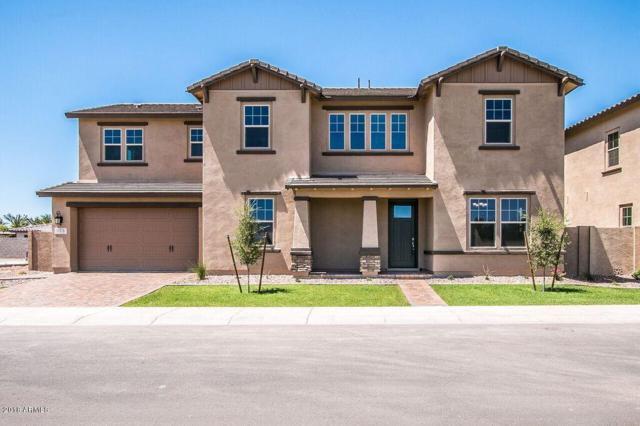 978 W Kaibab Drive, Chandler, AZ 85248 (MLS #5788806) :: The Garcia Group @ My Home Group