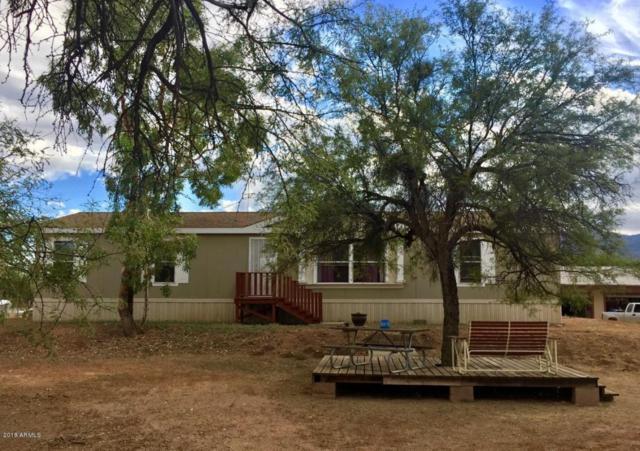 297 S Wade Schandley Drive, Tonto Basin, AZ 85553 (MLS #5788903) :: The Daniel Montez Real Estate Group