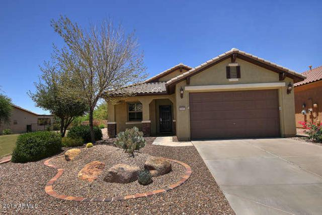 6682 W Patriot Way, Florence, AZ 85132 (MLS #5789015) :: Riddle Realty