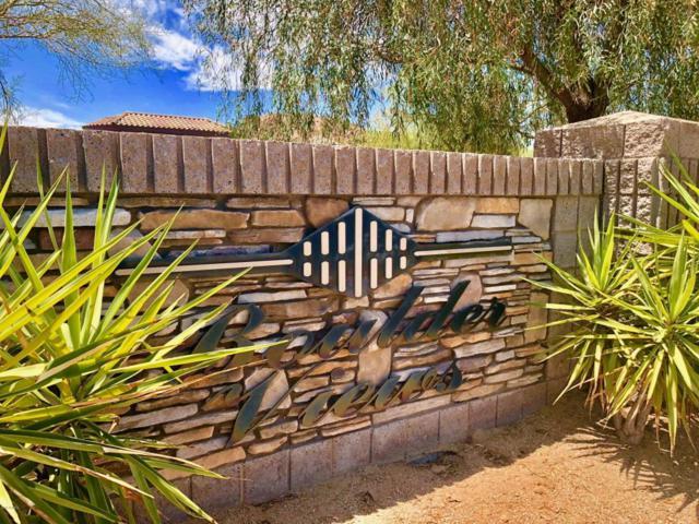 9534 E Julep Circle, Mesa, AZ 85207 (MLS #5789038) :: Occasio Realty