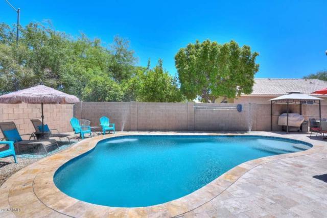 3630 W Villa Linda Drive, Glendale, AZ 85310 (MLS #5789051) :: REMAX Professionals