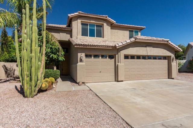 528 N Nevada Way, Gilbert, AZ 85233 (MLS #5789076) :: Yost Realty Group at RE/MAX Casa Grande