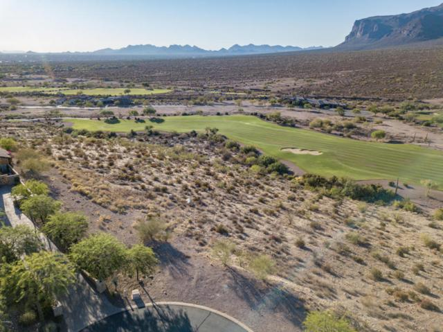 9368 E Skyline Trail, Gold Canyon, AZ 85118 (MLS #5789077) :: Arizona Home Group