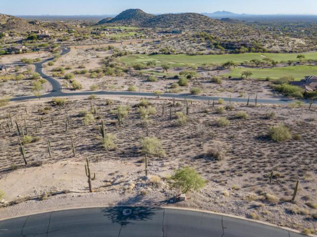 9331 E Skyline Trail, Gold Canyon, AZ 85118 (MLS #5789094) :: Arizona Home Group