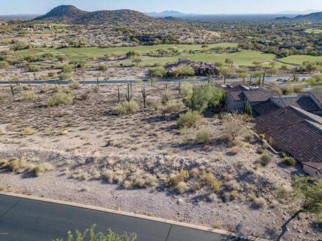 9315 E Skyline Trail, Gold Canyon, AZ 85118 (MLS #5789096) :: Arizona Home Group