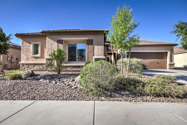 5691 W Admiral Way, Florence, AZ 85132 (MLS #5789167) :: Riddle Realty