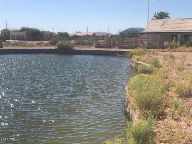 10859 W Reef Circle, Arizona City, AZ 85123 (MLS #5789425) :: The W Group