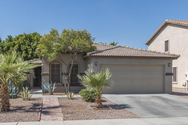 16243 W Maui Lane, Surprise, AZ 85379 (MLS #5789446) :: Yost Realty Group at RE/MAX Casa Grande