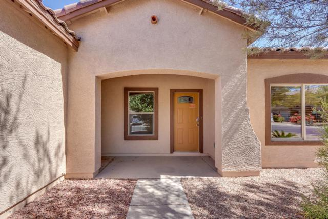 4658 E Whitehall Drive, San Tan Valley, AZ 85140 (MLS #5789459) :: Yost Realty Group at RE/MAX Casa Grande