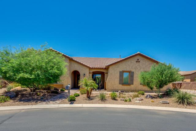 21912 E Silver Creek Court, Queen Creek, AZ 85142 (MLS #5789488) :: Group 46:10