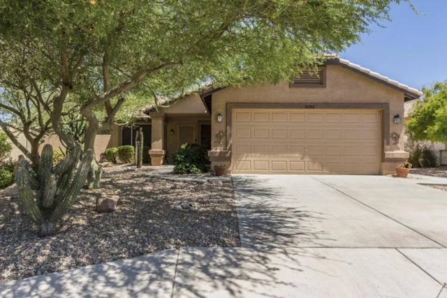 10540 W Irma Lane, Peoria, AZ 85382 (MLS #5789494) :: Desert Home Premier