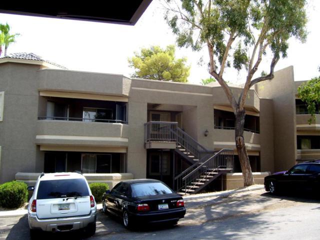 1720 E Thunderbird Road #2096, Phoenix, AZ 85022 (MLS #5789504) :: Arizona 1 Real Estate Team
