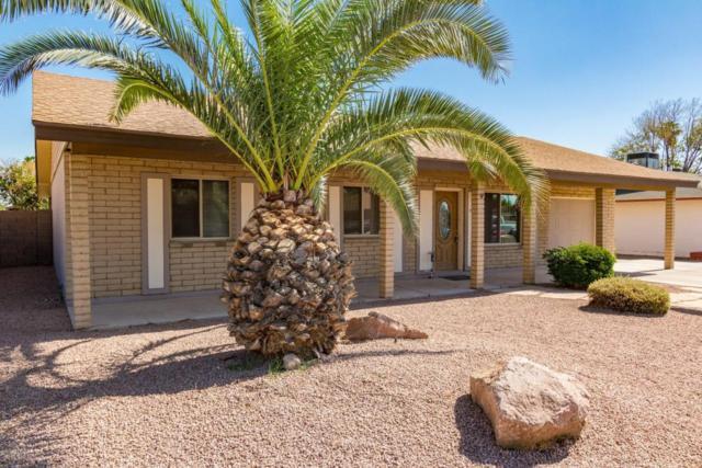 3643 W Lupine Avenue, Phoenix, AZ 85029 (MLS #5789534) :: The W Group