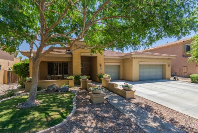 101 S Presidio Drive, Gilbert, AZ 85233 (MLS #5789541) :: The Jesse Herfel Real Estate Group