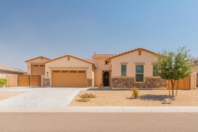 18615 W Denton Avenue, Litchfield Park, AZ 85340 (MLS #5789730) :: Yost Realty Group at RE/MAX Casa Grande