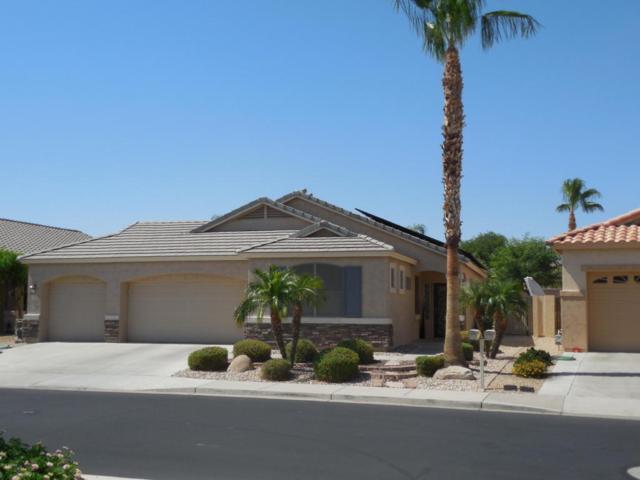 17798 W Sammy Way, Surprise, AZ 85374 (MLS #5789854) :: Desert Home Premier