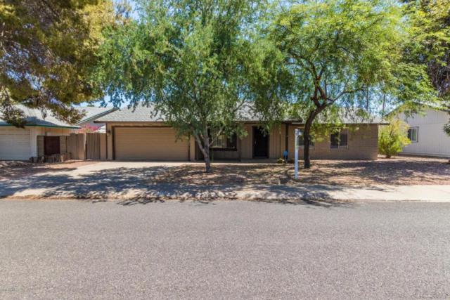 5123 E Half Moon Drive, Phoenix, AZ 85044 (MLS #5789894) :: Lifestyle Partners Team