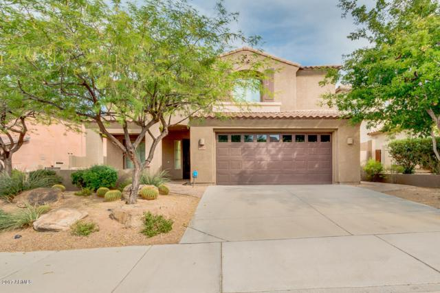8523 W Desert Elm Lane, Peoria, AZ 85383 (MLS #5789934) :: The Laughton Team