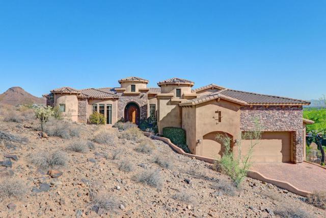 14248 N 26TH Place, Phoenix, AZ 85032 (MLS #5790040) :: Conway Real Estate