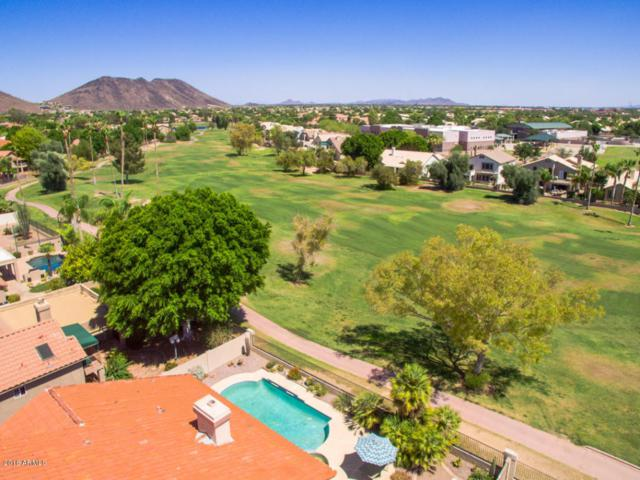 6309 W Lone Cactus Drive, Glendale, AZ 85308 (MLS #5790053) :: My Home Group