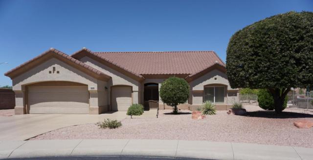 14313 W Gunsight Drive, Sun City West, AZ 85375 (MLS #5790088) :: The W Group