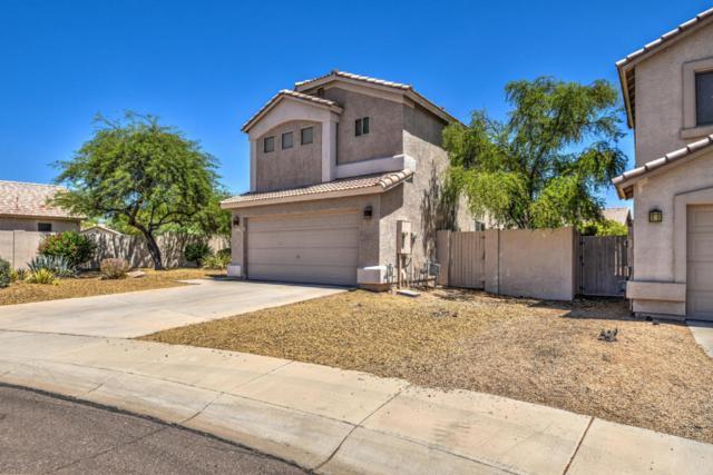 5037 E Armor Street, Cave Creek, AZ 85331 (MLS #5790156) :: Lux Home Group at  Keller Williams Realty Phoenix