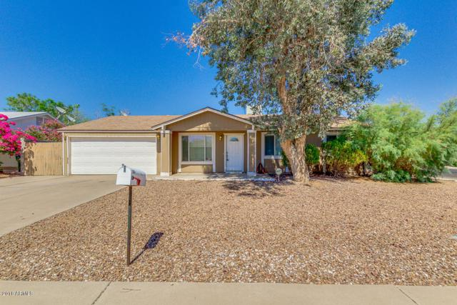17201 N 34TH Street, Phoenix, AZ 85032 (MLS #5790213) :: Brett Tanner Home Selling Team