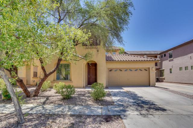 3849 E Battala Avenue, Gilbert, AZ 85297 (MLS #5790247) :: The Jesse Herfel Real Estate Group