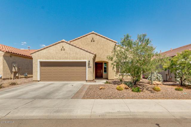 2993 N Princeton Drive, Florence, AZ 85132 (MLS #5790275) :: The Jesse Herfel Real Estate Group