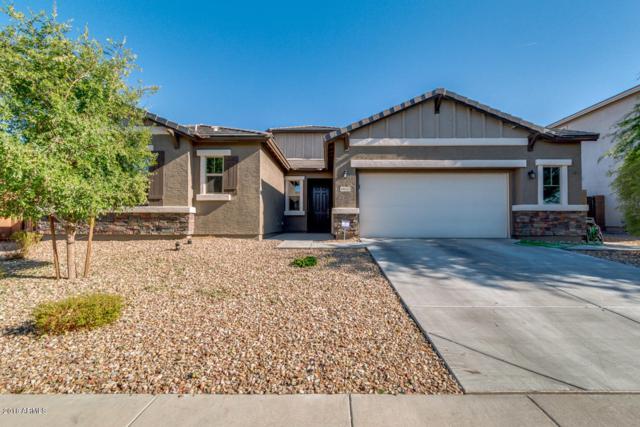 18633 W North Lane, Waddell, AZ 85355 (MLS #5790469) :: Phoenix Property Group