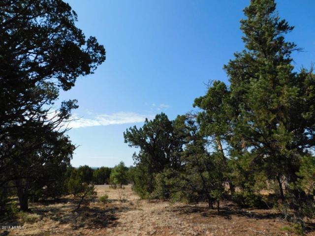 1524 Rocky Top Drive, Heber, AZ 85928 (MLS #5790731) :: Yost Realty Group at RE/MAX Casa Grande