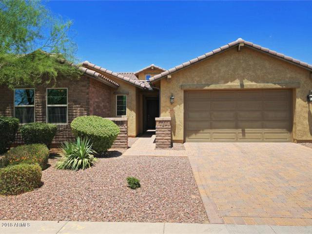 10816 E Ramblewood Circle, Mesa, AZ 85212 (MLS #5790771) :: The Jesse Herfel Real Estate Group