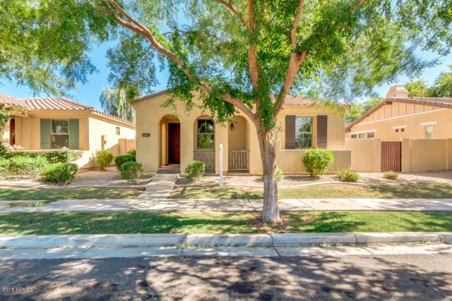 3391 E Kent Avenue, Gilbert, AZ 85296 (MLS #5790782) :: Kepple Real Estate Group