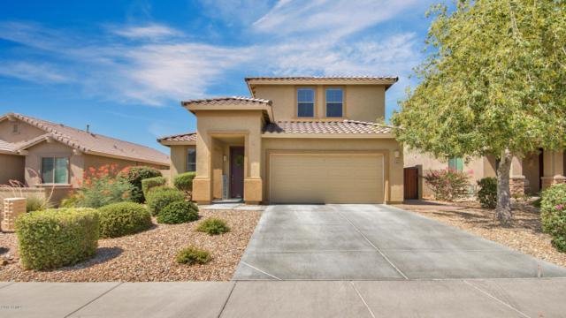 5413 W Straight Arrow Lane, Phoenix, AZ 85083 (MLS #5790854) :: REMAX Professionals