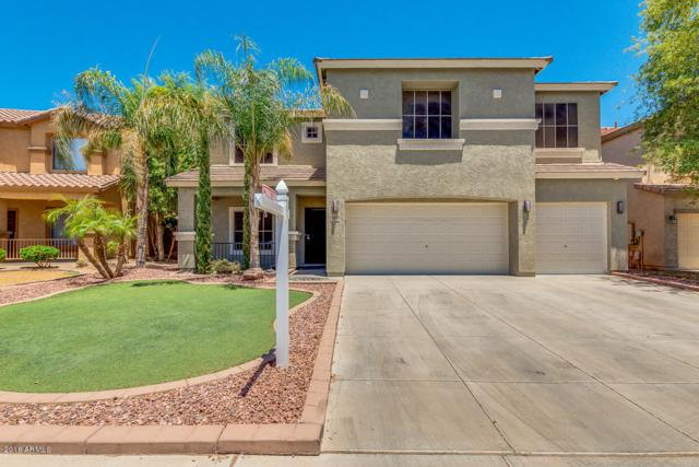11819 N 151ST Drive, Surprise, AZ 85379 (MLS #5790920) :: Occasio Realty