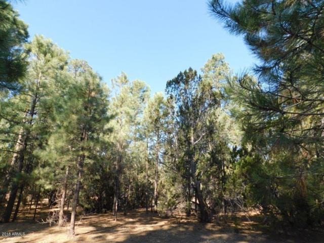 2900 Long Rifle Place, Overgaard, AZ 85933 (MLS #5791063) :: Brett Tanner Home Selling Team