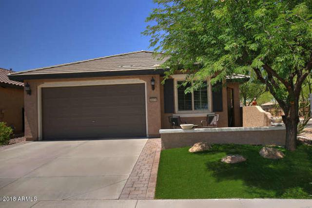 6613 W Mockingbird Court, Florence, AZ 85132 (MLS #5791202) :: Riddle Realty