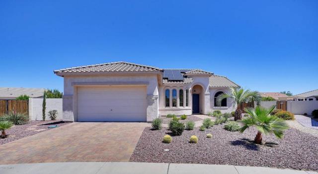 17797 N Johns Court, Surprise, AZ 85374 (MLS #5791240) :: Desert Home Premier