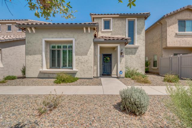 26312 N 53RD Glen, Phoenix, AZ 85083 (MLS #5791283) :: REMAX Professionals