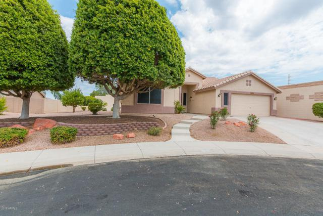 8302 W Escuda Drive, Peoria, AZ 85382 (MLS #5791327) :: Desert Home Premier