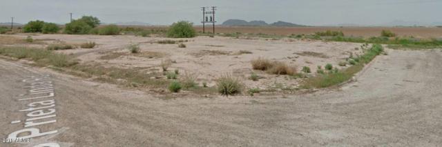 13050 S Prieta Linda Road, Arizona City, AZ 85123 (MLS #5791345) :: The Garcia Group @ My Home Group