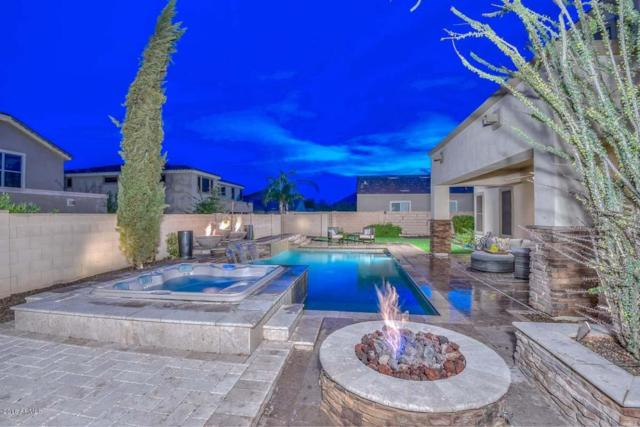 4913 W Swayback Pass, Phoenix, AZ 85083 (MLS #5791384) :: REMAX Professionals