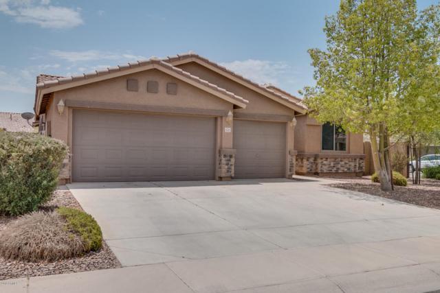 42201 W Rojo Street, Maricopa, AZ 85138 (MLS #5791483) :: Riddle Realty