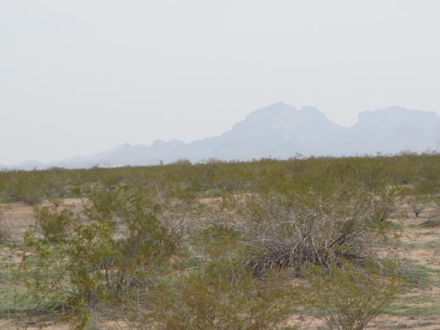 0 W Centennial Road, Tonopah, AZ 85354 (MLS #5791599) :: Riddle Realty Group - Keller Williams Arizona Realty