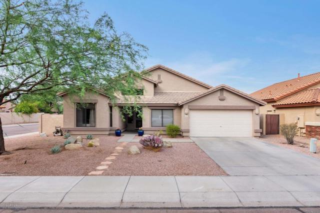 4419 E Jaeger Road, Phoenix, AZ 85050 (MLS #5791686) :: Riddle Realty