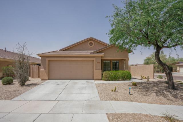 17577 W Ocotillo Avenue, Goodyear, AZ 85338 (MLS #5791712) :: Kortright Group - West USA Realty