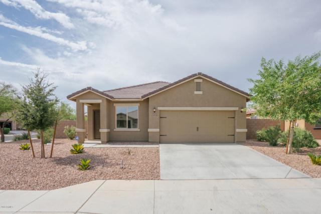 24524 W Mobile Lane, Buckeye, AZ 85326 (MLS #5791718) :: Occasio Realty
