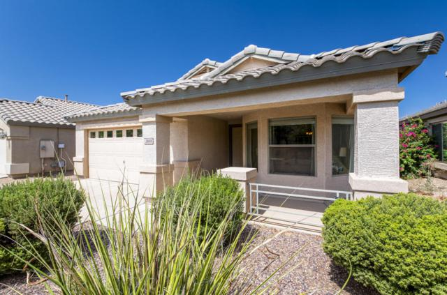 28818 N Gold Lane, San Tan Valley, AZ 85143 (MLS #5791735) :: Keller Williams Realty Phoenix