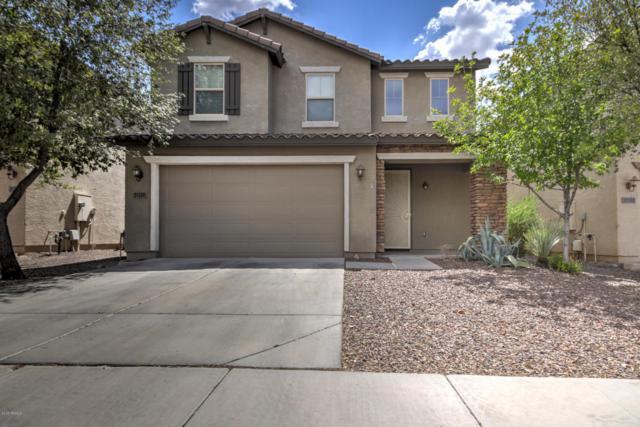 31320 N Cavalier Drive, San Tan Valley, AZ 85143 (MLS #5791746) :: Yost Realty Group at RE/MAX Casa Grande