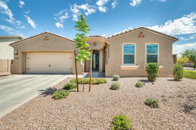 9008 W Seldon Lane, Peoria, AZ 85345 (MLS #5791758) :: The Wehner Group